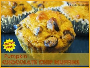 Gluten-Free Pumpkin Chocolate Chip Muffin