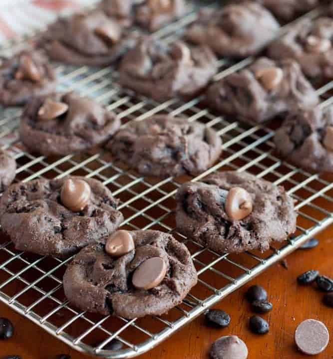 Fudgy gluten free mocha chocolate chip cookies are soft and chewy. They are full of cocoa and chocolate with just a hint of bitter coffee.