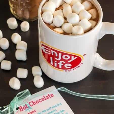 Vegan Hot Chocolate Mix Recipe- Perfect for Gifting